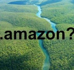 "ICANN says ""no"" to .amazon. Yes, AMAZON®, there is a river!"