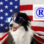 Foreign Brand Owner's Guide to US Trademark Registration