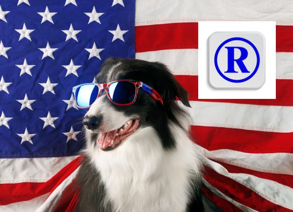 US trademark registration 578 x 420